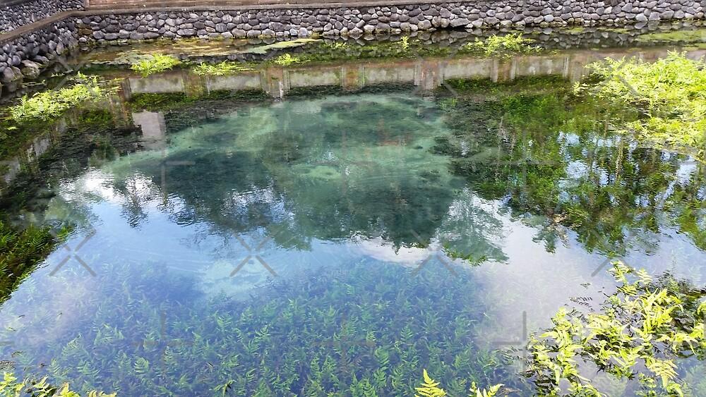 Zen Water Garden by lateralcanvas