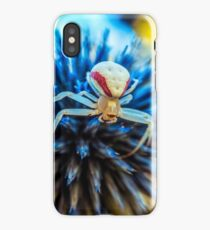 Crab spider close up macro iPhone Case/Skin