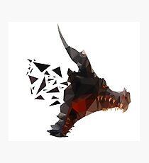 Prismatic Dark Dragon Photographic Print