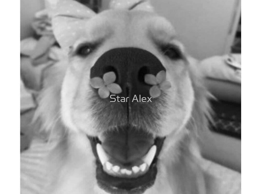 Flower dog by skash16