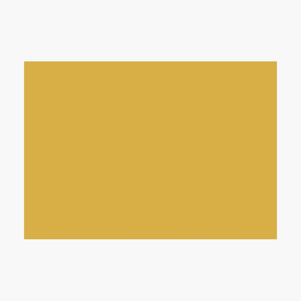 Spicy Mustard 14-0952 TCX | Pantone | Color Trends | Fall Winter 2016 | Solid Colors | Fashion Colors | Photographic Print