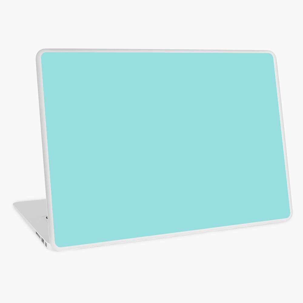 Limpet Shell 13-4810 TCX | Pantone | Color Trends | Spring Summer 2016 | Solid Colors | Fashion Colors | Laptop Skin