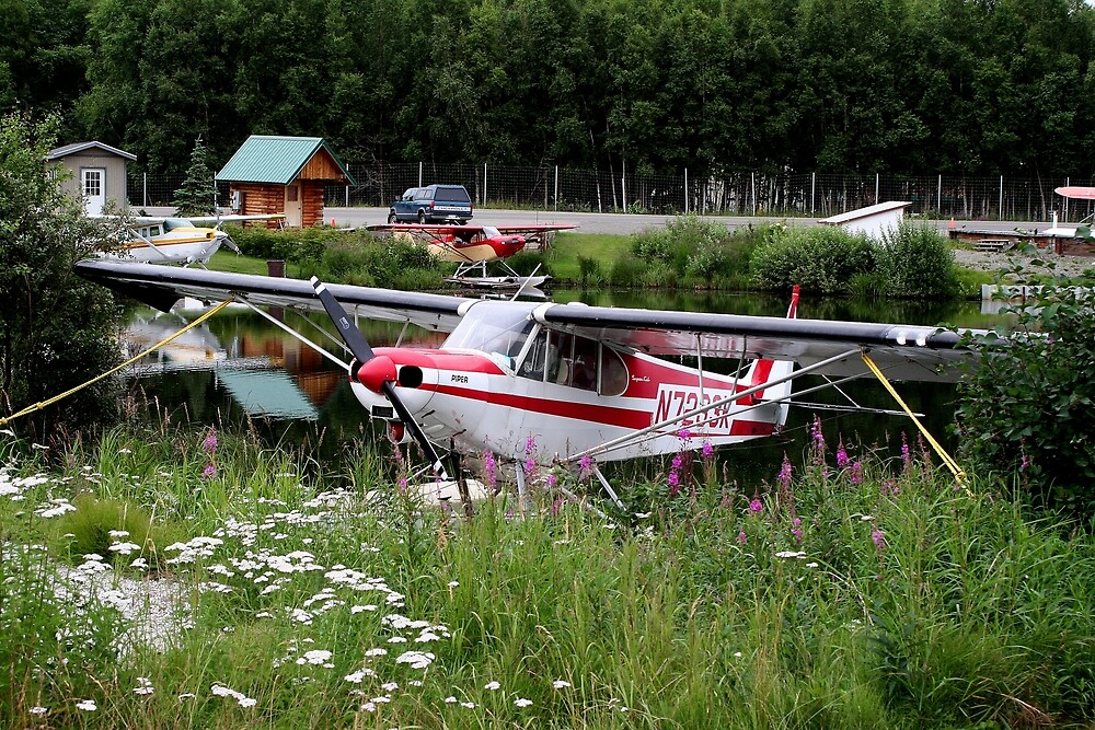 Float plane among the flowers, Alaska by FranWest