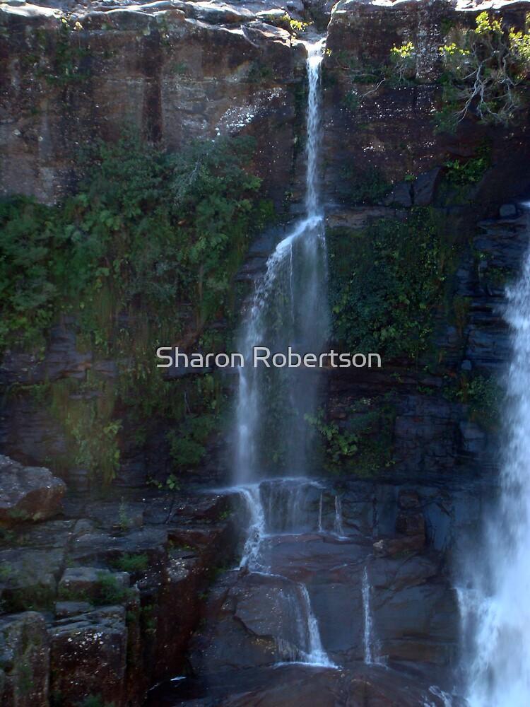 Waterfall by Sharon Robertson