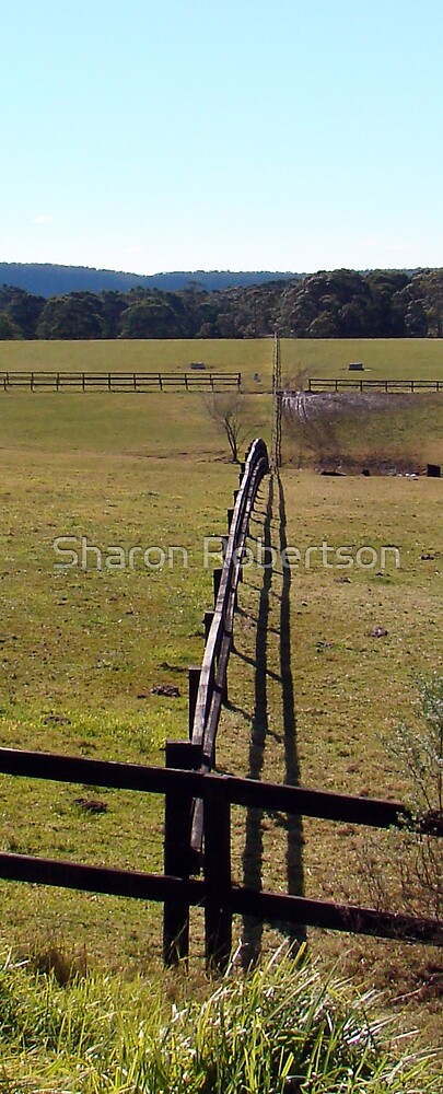 Fence Line by Sharon Robertson