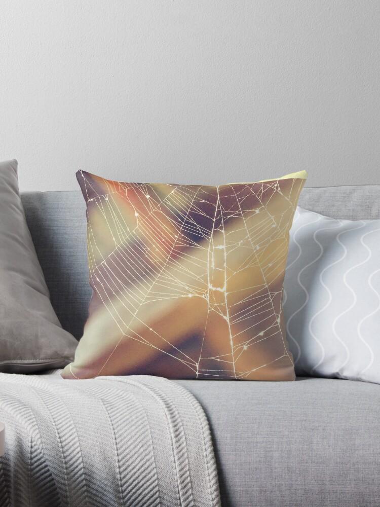 Spiderweb by PicsByMi