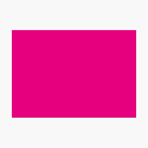 Hot Pink | Solid Color |  Photographic Print