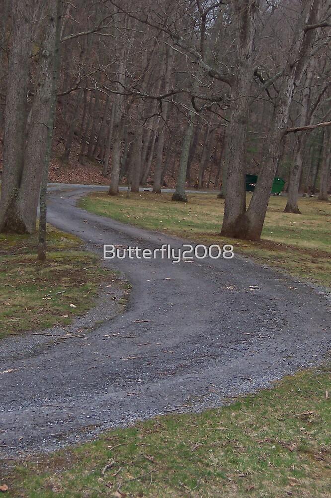 Winding Road by Butterfly2008
