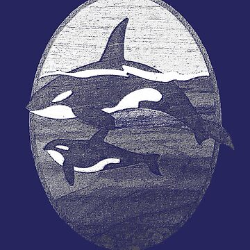 Orca Whale by JNaturally