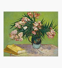 Oleanders by Vincent Van Gogh, 1888 Photographic Print