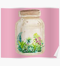Rain forest in a Jar Poster