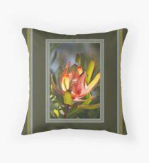 Beautiful Spring Protea Floor Pillow