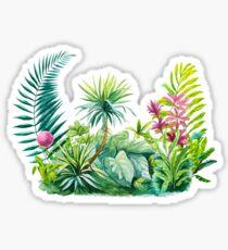 Rainforest Sticker