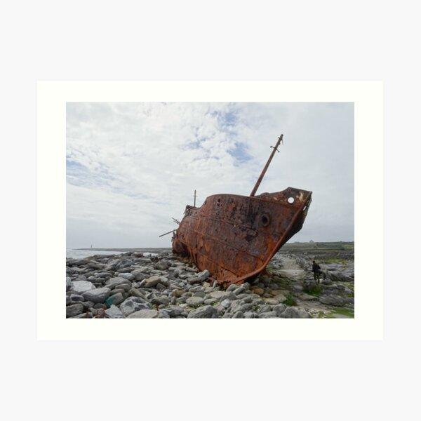 Plassey shipwreck Art Print
