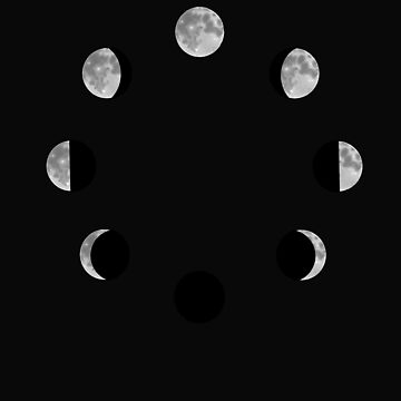 Phases of the Moon by MissMegMcGee