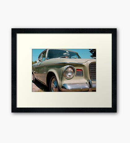 summer green Framed Print