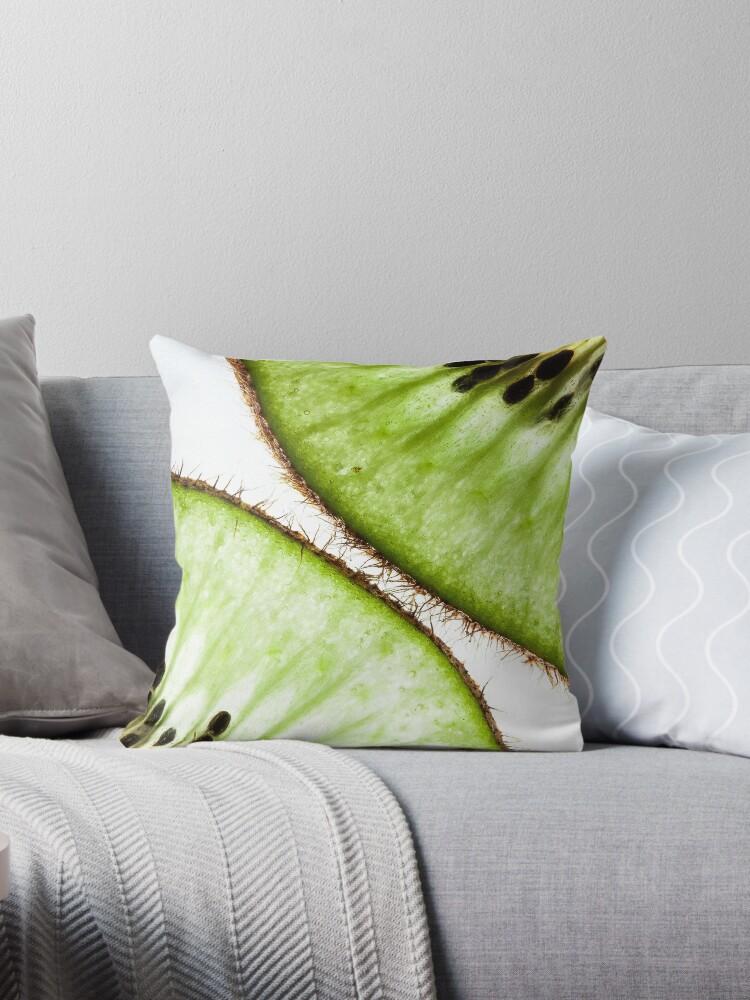 Macro photo of kiwifruit by PLdesign