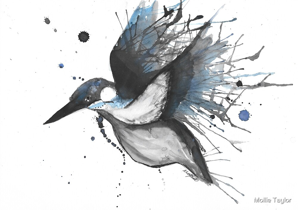 Kingfisher by Mollie Taylor