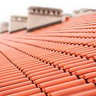 Overlapping rows of red tiles roof by Arletta Cwalina