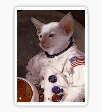 Cat in Space Sticker
