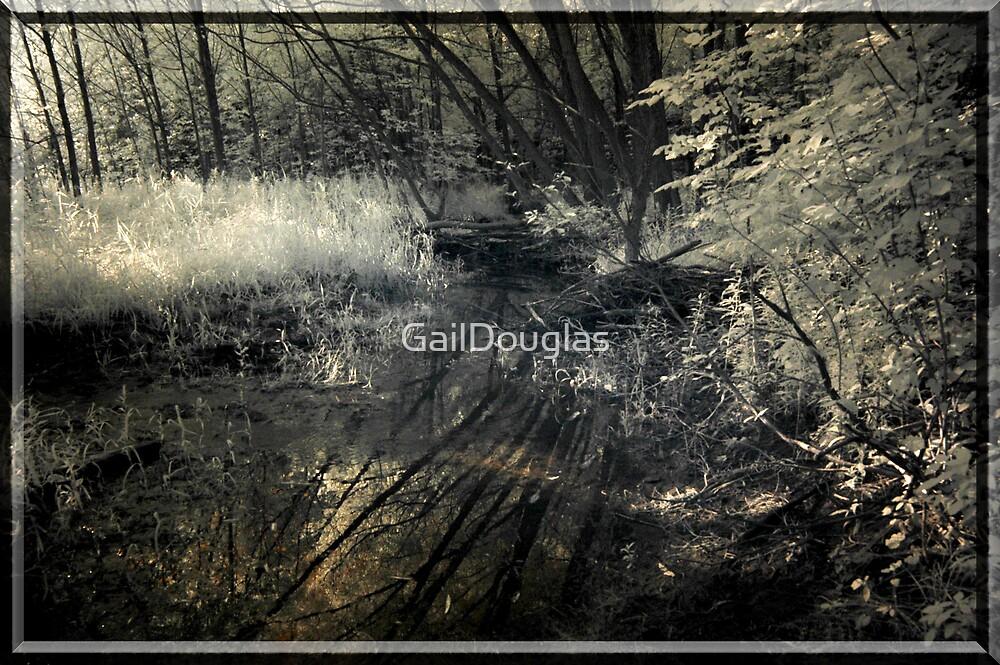 Reflections by GailDouglas
