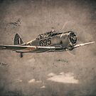 WWII RAAF Wirraway  by Mark Greenmantle