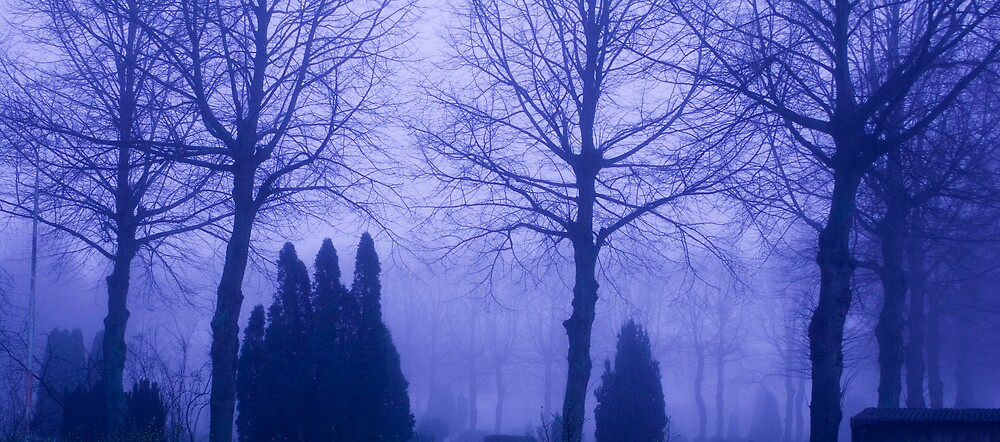 Blue Mist by lordl