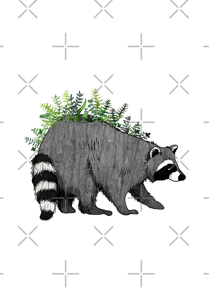 Fern Raccoon by katherineblower