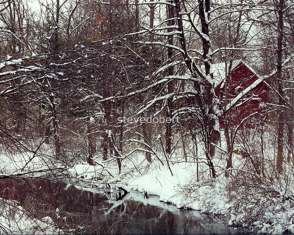 cabin in the snow by stevedobert