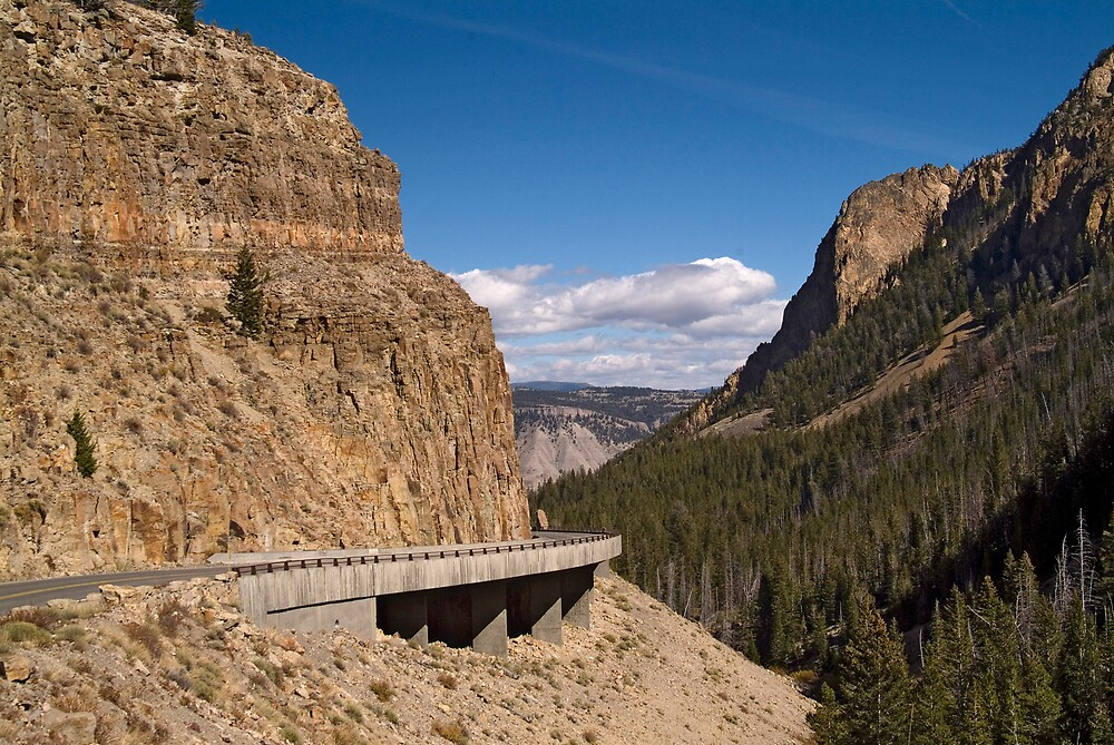 Road to Mammoth, Yellowstone Nat'l Park by gcamilleri