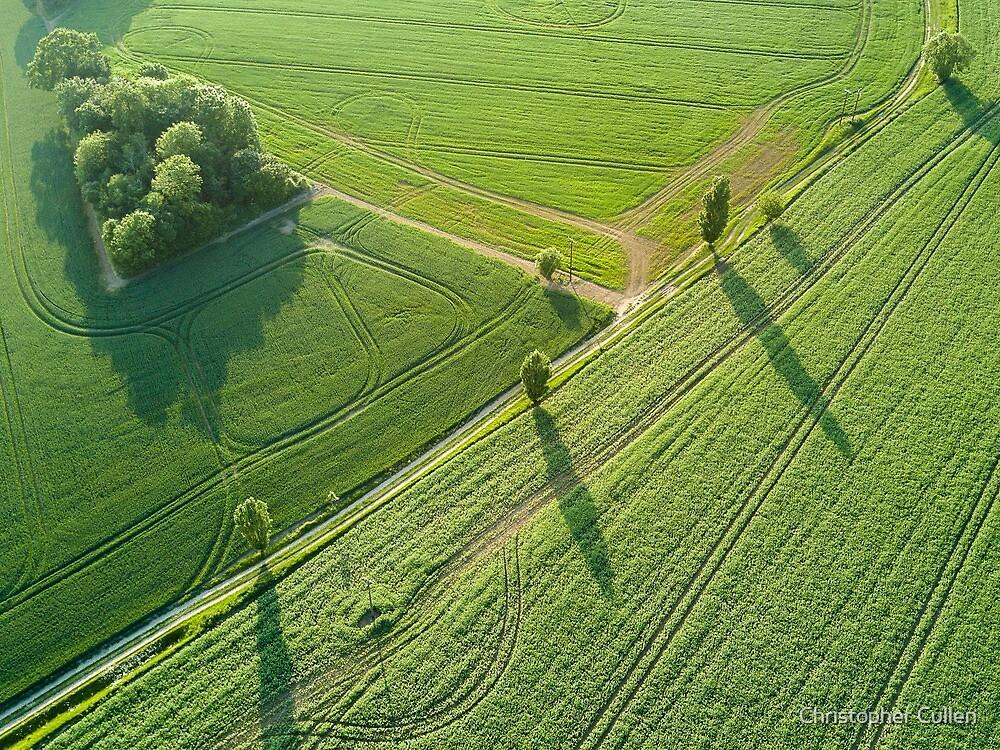 Suffolk Fields #3 by Christopher Cullen