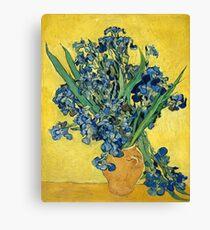 Vincent van Gogh - Irises, 1890  Canvas Print