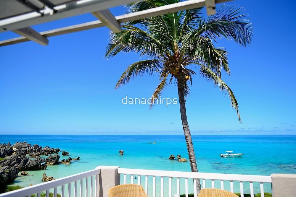 View from Beach House by danachirps