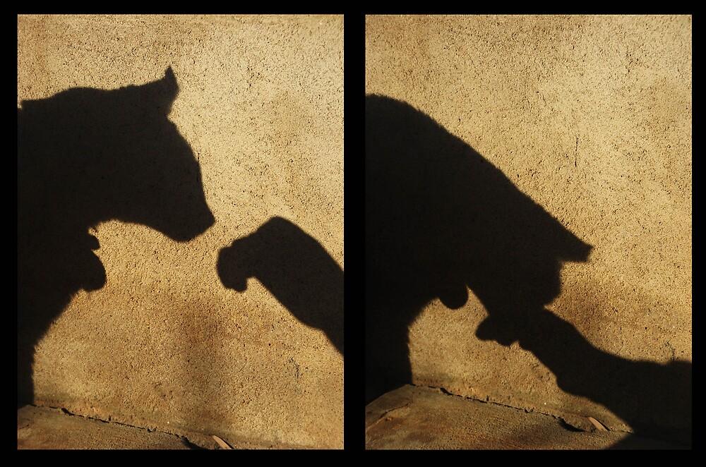 Shadow talk by SarahTrangmar