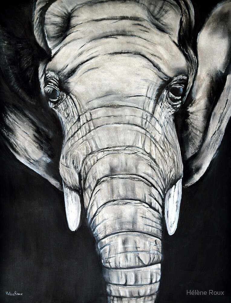 Elephant / Africa / Hélène Roux / Portrait / Animals / Wild / Savannah / African / Animal Art by Hélène Roux