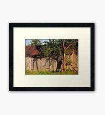 Abandoned old wooden shack Framed Print