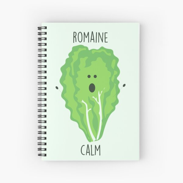 Romaine Calm // Happy Little Owl Collection Spiral Notebook