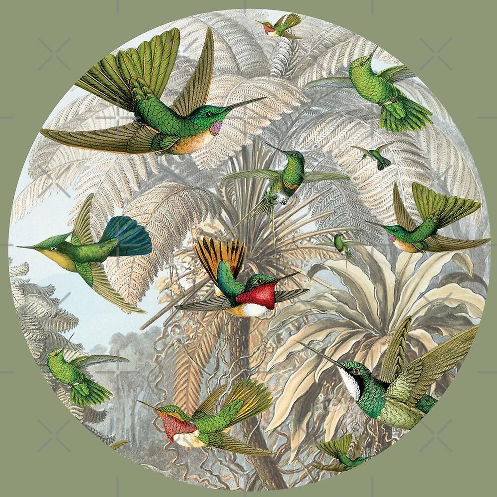 Hummingbirds 2 by hyggenok