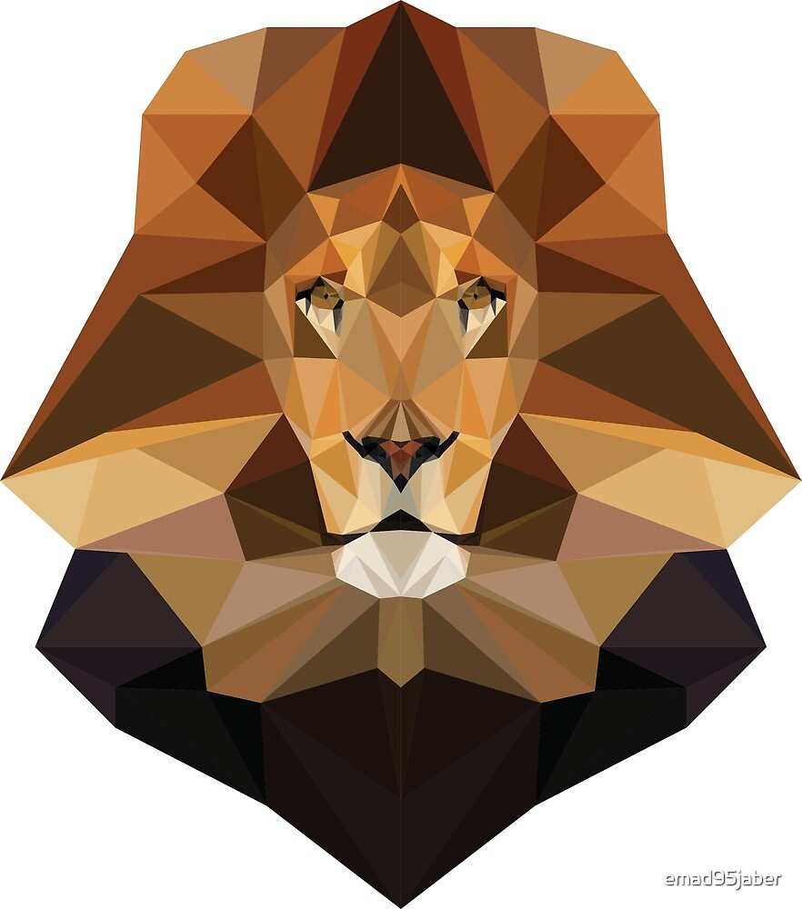 Lion geometry by emad95jaber