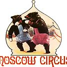 Moscow Circus Boxing Bears Russia by hilda74