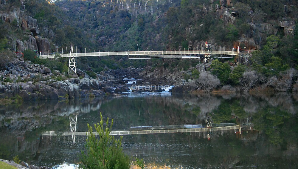 Cataract Gorge by orianne