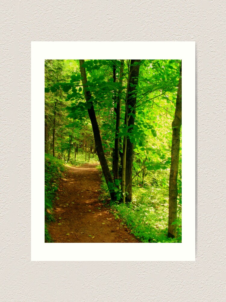 Alternate view of Your Path Art Print