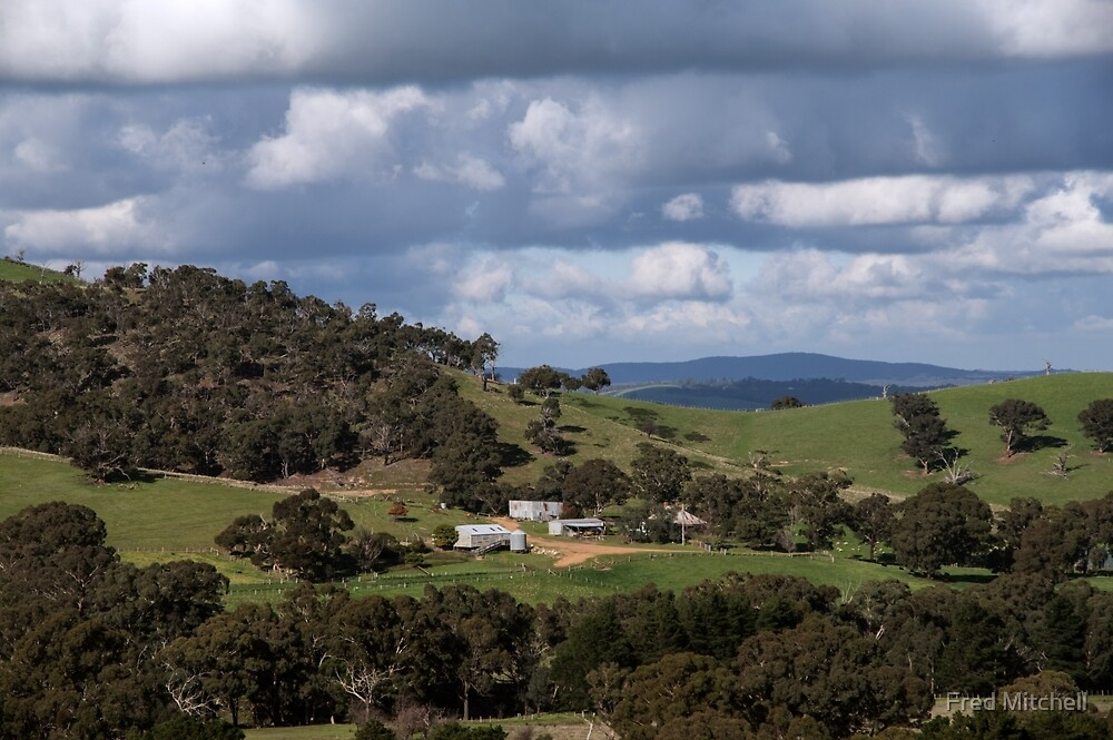 A Farm on Road between Whittlesea and Arthur's Creek Victoria 20170618 0751 by Fred Mitchell