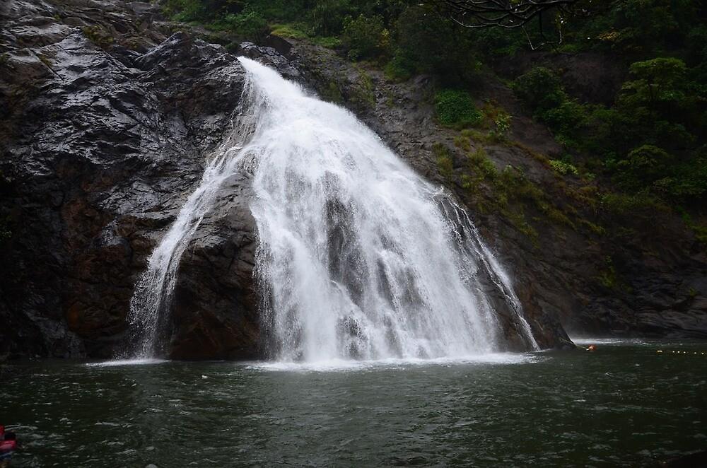 Dudhsagar falls of Goa by Rakhi  Surekha