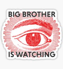 Big brother is watching Sticker
