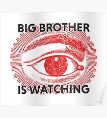 Big brother is watching Poster