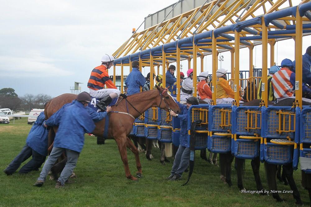 Cranbourne Races by Norm  Lewis