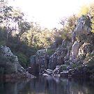 Swimming hole, Freestone Creek, Briagolong by straylight