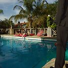 Swim Suit: Watching and waiting by Leila  Koren