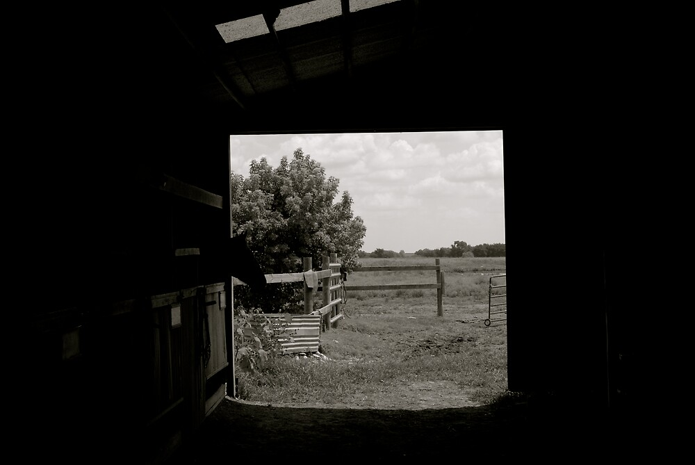 At The Horse Ranch - Barn by Robert Baker